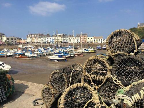 Ilfracombe Fishing Excursions